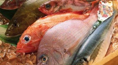 pesce_400